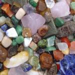 نقش ضروری  مواد معدنی (Minerals) در بدن حیوانات